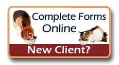 New Client - Brevard Veterinary Hospital